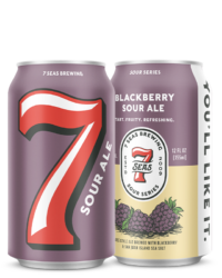 Blackberry Sour Ale - coming this Fall